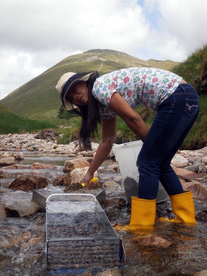 Filipino Woman Sluicing For Gold. Filipinio Woman Sluicing For Gold In a Mountain River Tyndrum, Scotland royalty free stock photo