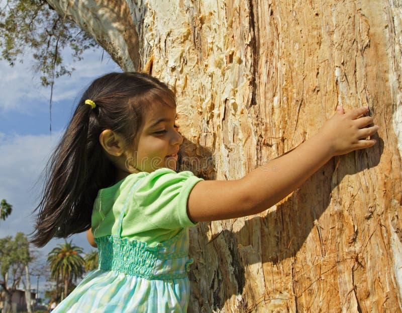 Fille étreignant un arbre photographie stock libre de droits