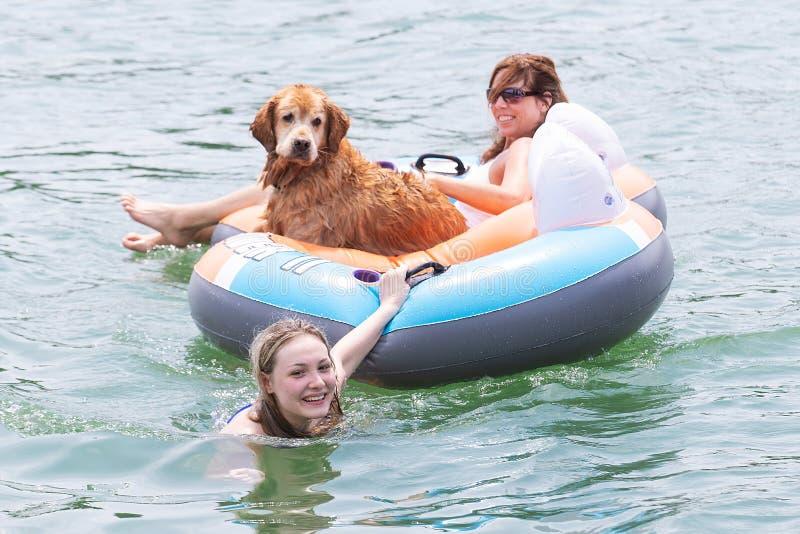 Fille adolescente heureuse tirant la maman et le chien sur le tube gonflable images libres de droits