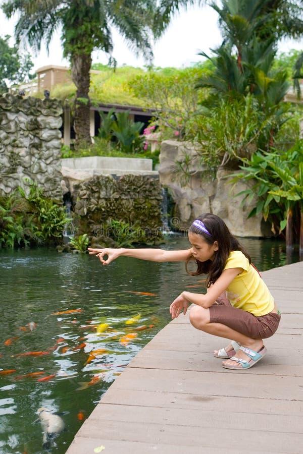 Fille alimentant les carpes exotiques de Koi photographie stock libre de droits