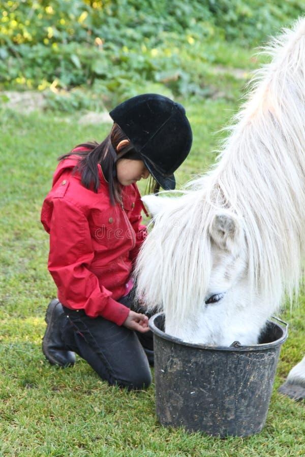 Fille alimentant un cheval blanc au Danemark photo stock