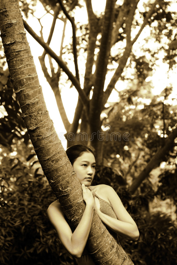 Fille asiatique étreignant l'arbre image stock