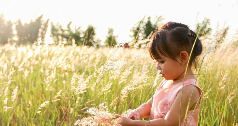 Fille asiatique d'enfant riant et heureuse sur le pré en été en nature image libre de droits