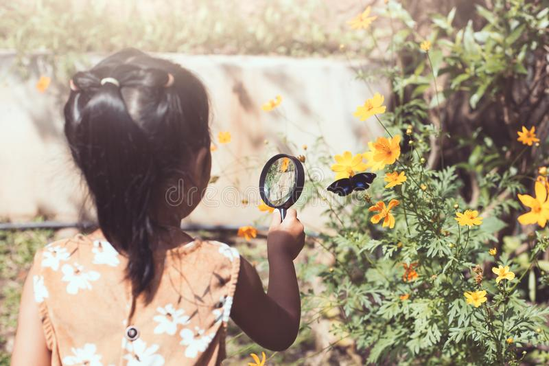 Fille asiatique de petit enfant employant le papillon de observation de loupe photo stock