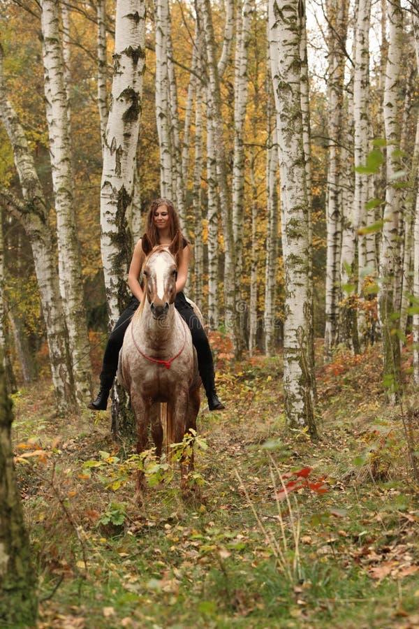 Fille assez jeune montant un cheval sans tout équipement en automne image libre de droits