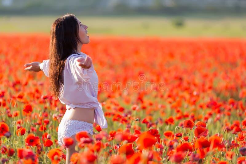 Fille au champ de floraison de pavot photo libre de droits