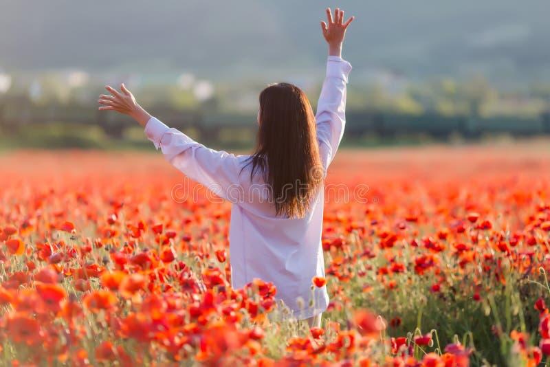 Fille au champ de floraison de pavot photos libres de droits