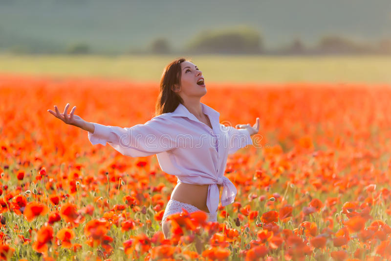 Fille au champ de floraison de pavot photographie stock libre de droits
