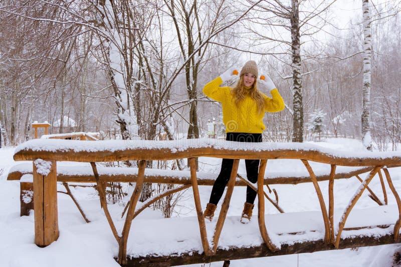 Fille avec des mandarines en parc d'hiver photographie stock libre de droits