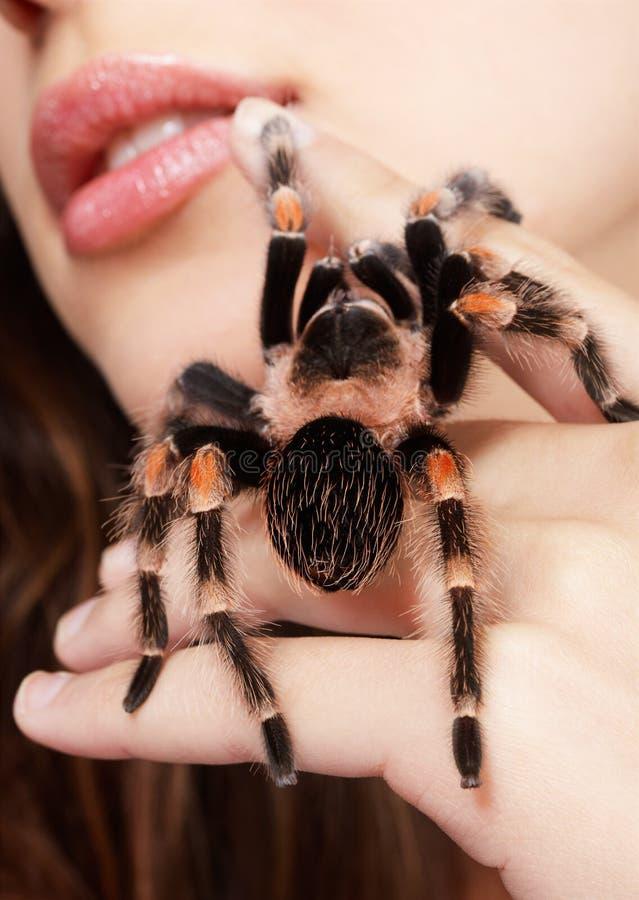 Fille avec l'araignée photographie stock