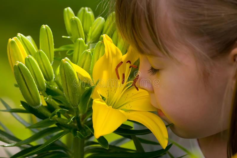 Fille avec la fleur photographie stock