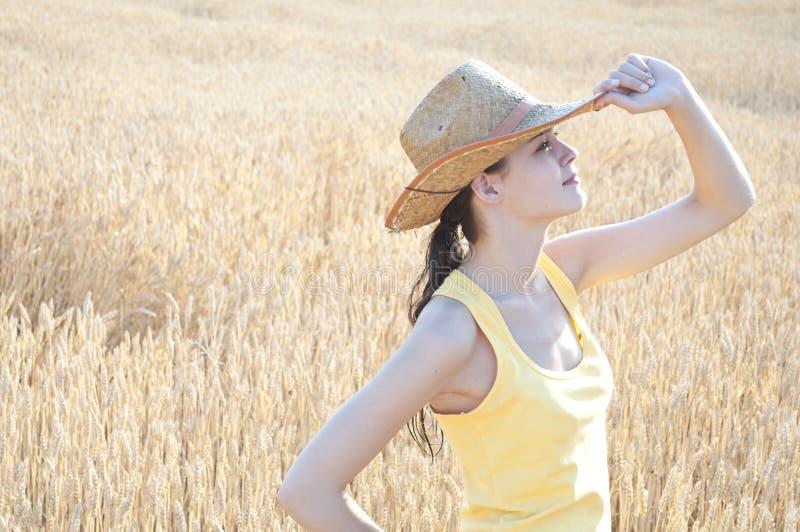 Fille avec le chapeau de cowboy dans le domaine de blé images libres de droits