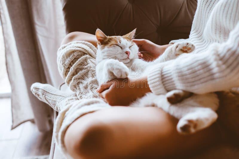 Fille avec le chat détendant sur un sofa photos libres de droits
