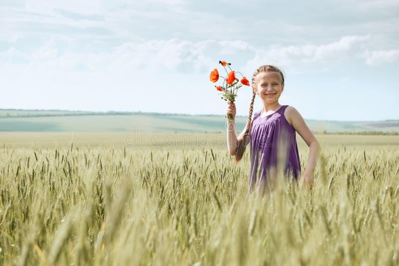 Fille avec les fleurs rouges de tulipe posant dans le domaine de blé, le soleil lumineux, beau paysage d'été photos libres de droits