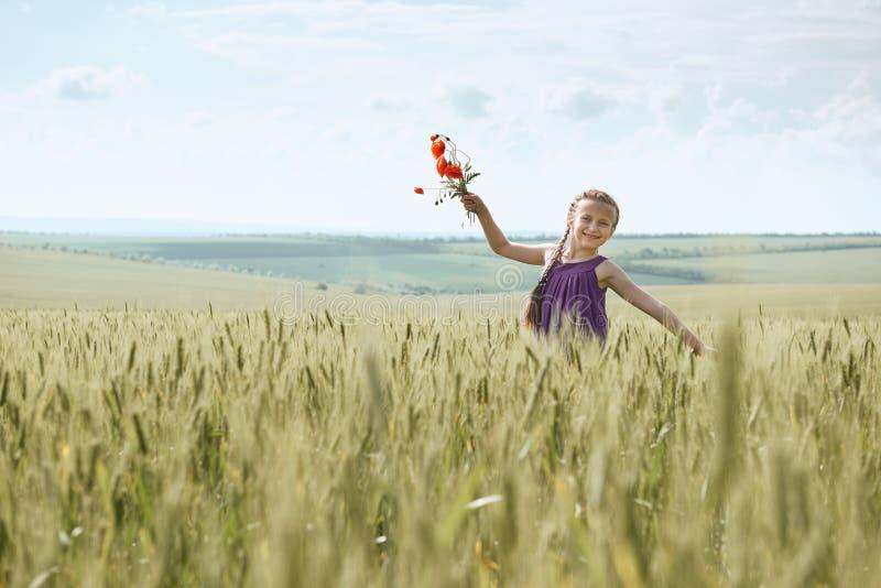 Fille avec les fleurs rouges de tulipe posant dans le domaine de blé, le soleil lumineux, beau paysage d'été photo libre de droits