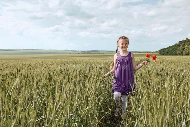 Fille avec les fleurs rouges de tulipe posant dans le domaine de blé, le soleil lumineux, beau paysage d'été photos stock