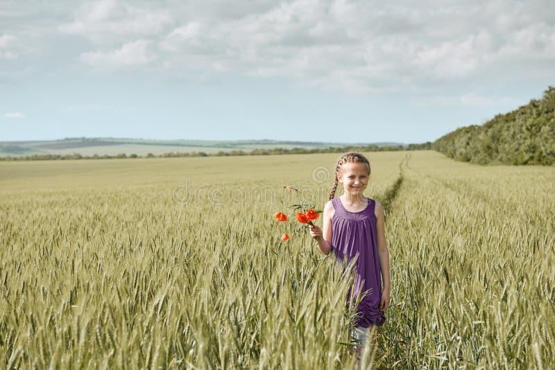Fille avec les fleurs rouges de tulipe posant dans le domaine de blé, le soleil lumineux, beau paysage d'été image libre de droits