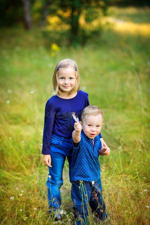 Fille avec son jeune frère marchant en parc photographie stock libre de droits