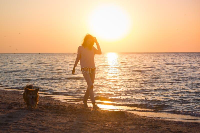 Fille avec un chien sur la plage photos stock