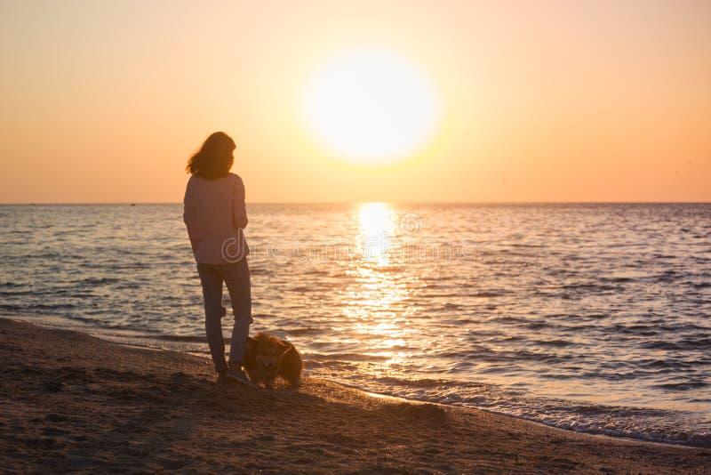 Fille avec un chien sur la plage image stock