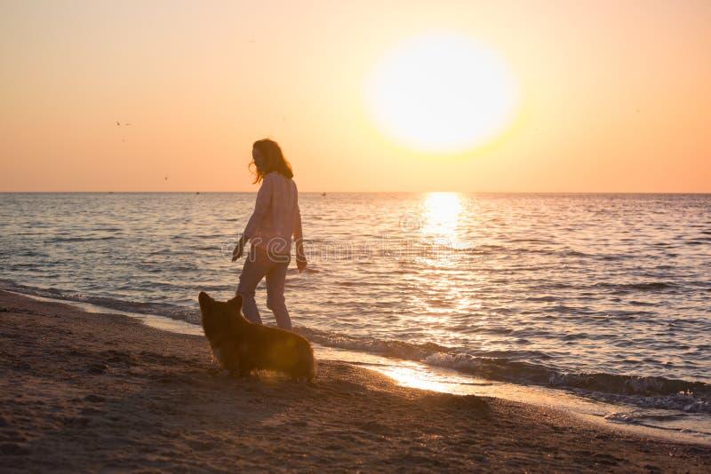 Fille avec un chien sur la plage photo libre de droits