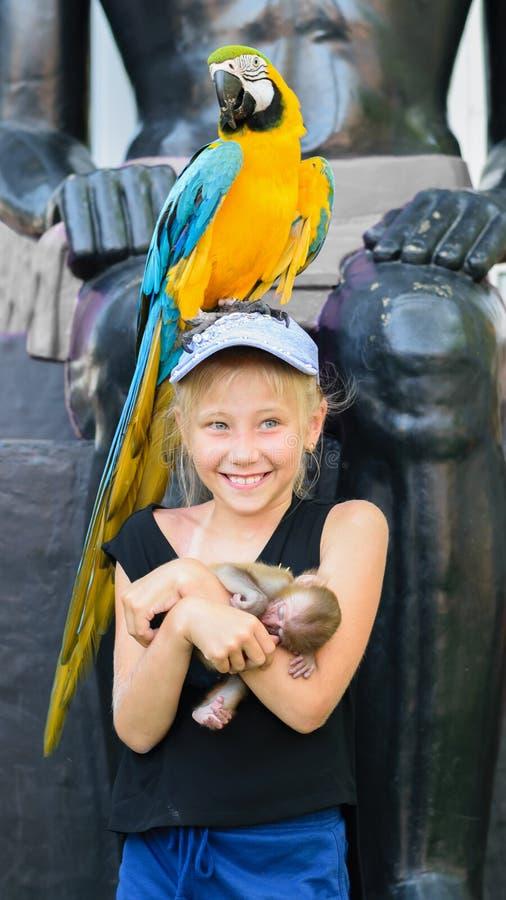 Fille avec un perroquet et un singe sur le fond d'un mur en pierre photo stock