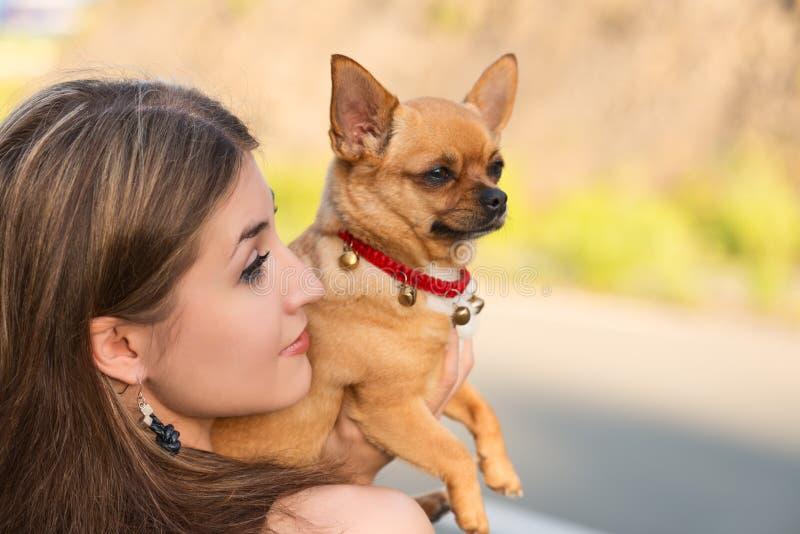 Fille blonde et chien rouge de chiwawa images libres de droits