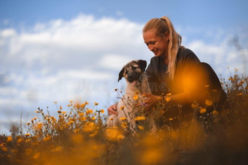 Fille blonde jouant avec le mastiff espagnol de chiot dans un domaine des fleurs jaunes photographie stock