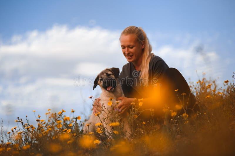 Fille blonde jouant avec le mastiff espagnol de chiot dans un domaine des fleurs jaunes images libres de droits
