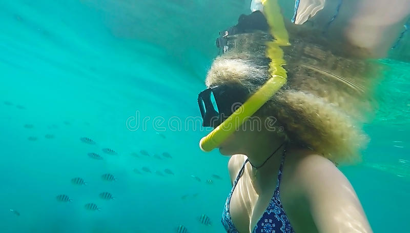 Fille blonde naviguant au schnorchel parmi des poissons images libres de droits