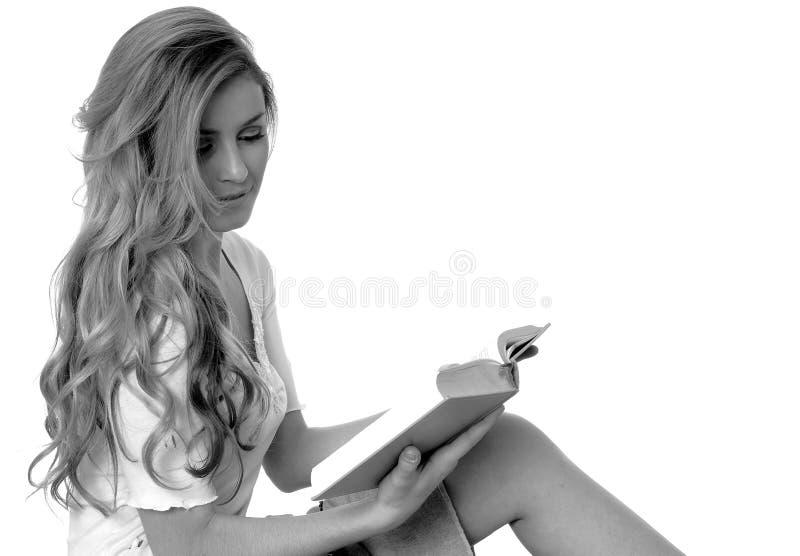 Fille blonde sexy photographie stock libre de droits