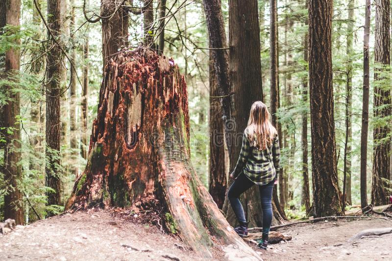 Fille chez Baden Powell Trail près de roche de carrière à Vancouver du nord, image stock