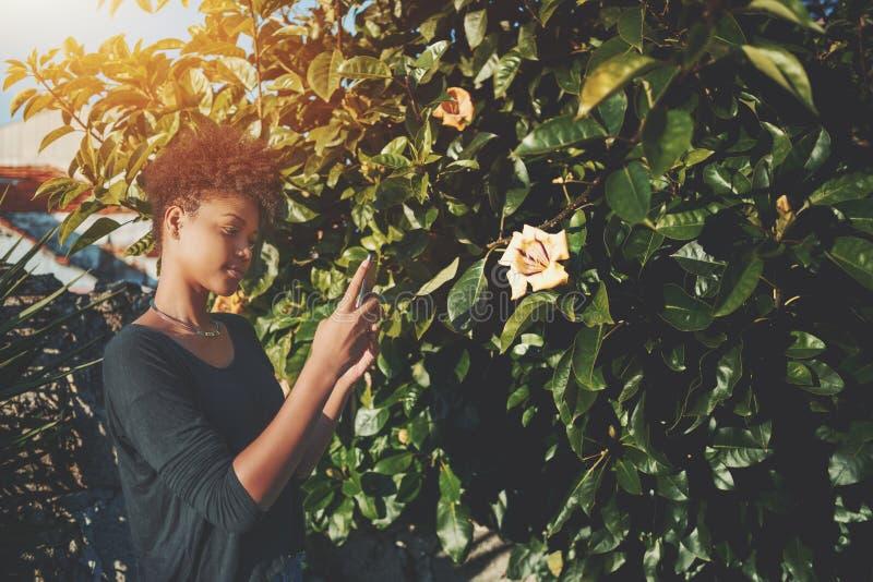 Fille d'afro-américain prenant la photo de la fleur sur le smartphone photographie stock libre de droits