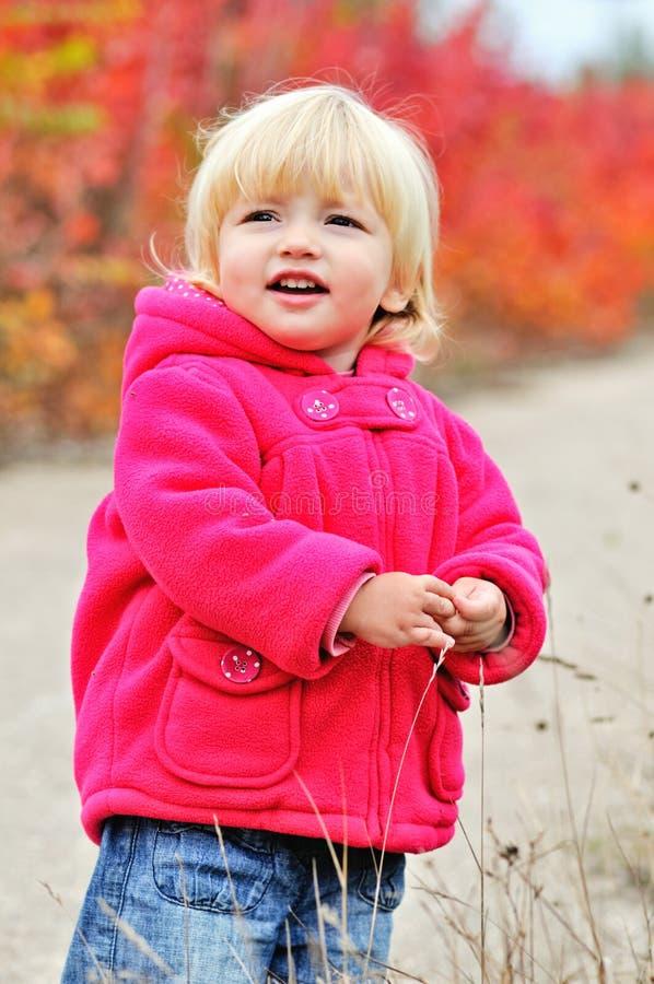 Fille d'enfant en bas âge en parc de chute photographie stock