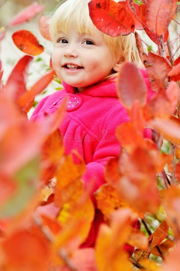 Fille d'enfant en bas âge se tenant dans les buissons photos stock