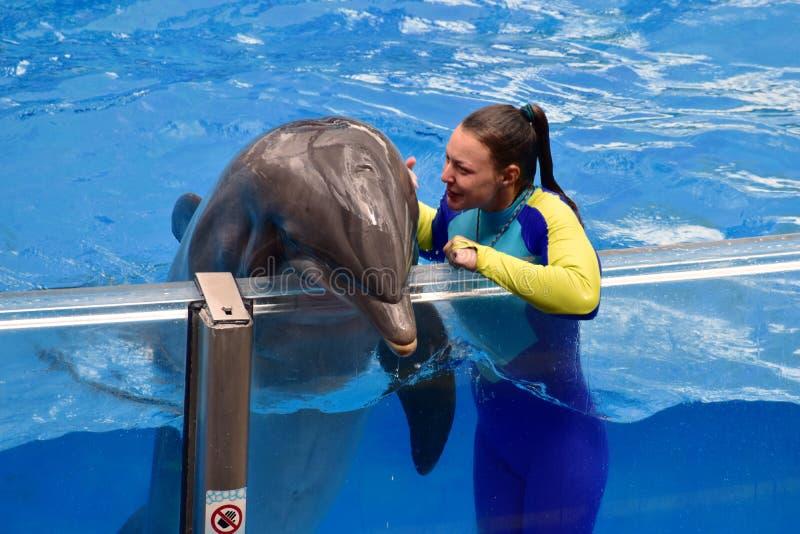 Fille d'instructeur parlant à un dauphin gentil photographie stock libre de droits
