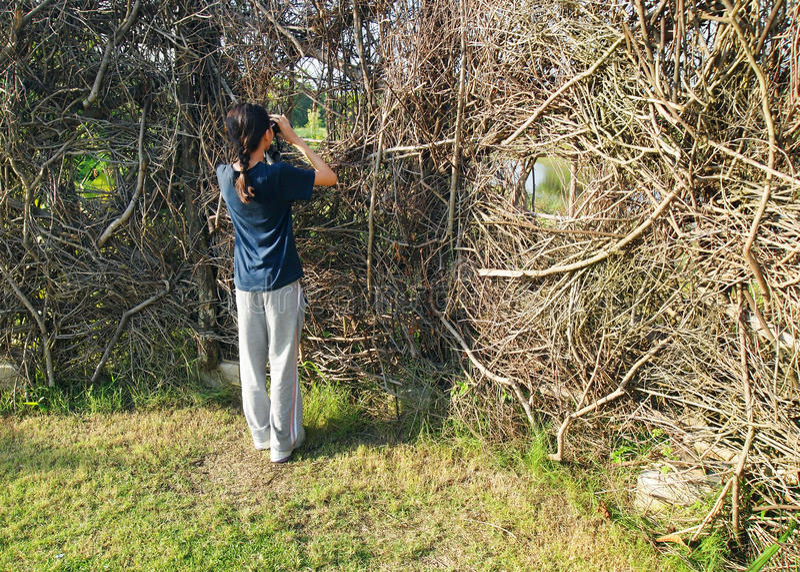 Fille dans l'activité d'observation des oiseaux à la peau de nature photo libre de droits