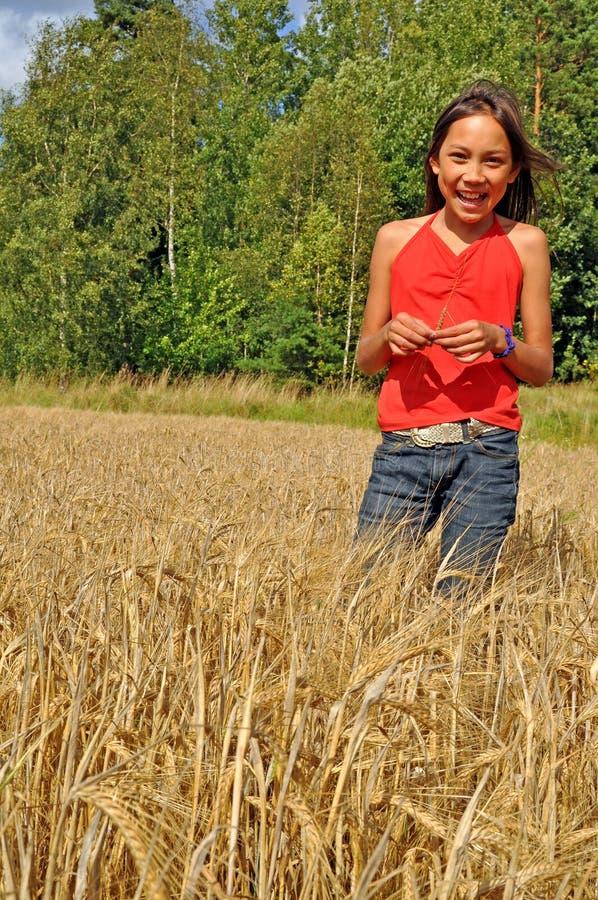 Fille dans l'oatfield image libre de droits