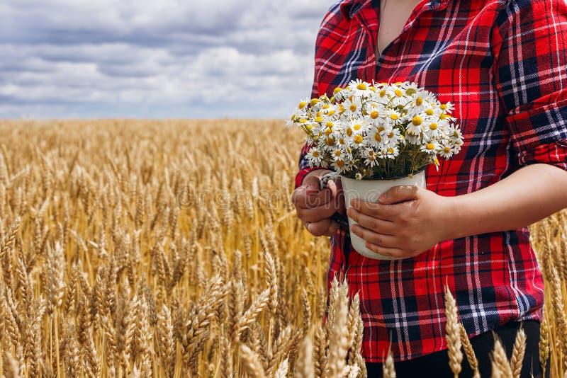 Fille dans la chemise rouge se tenant dans le domaine de blé et tenant le bouquet des marguerites photographie stock libre de droits