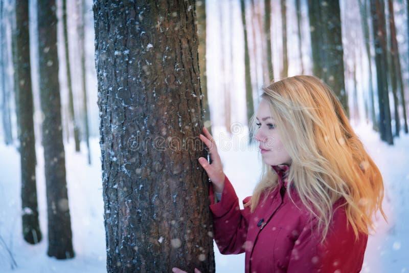 Fille dans la forêt photographie stock libre de droits