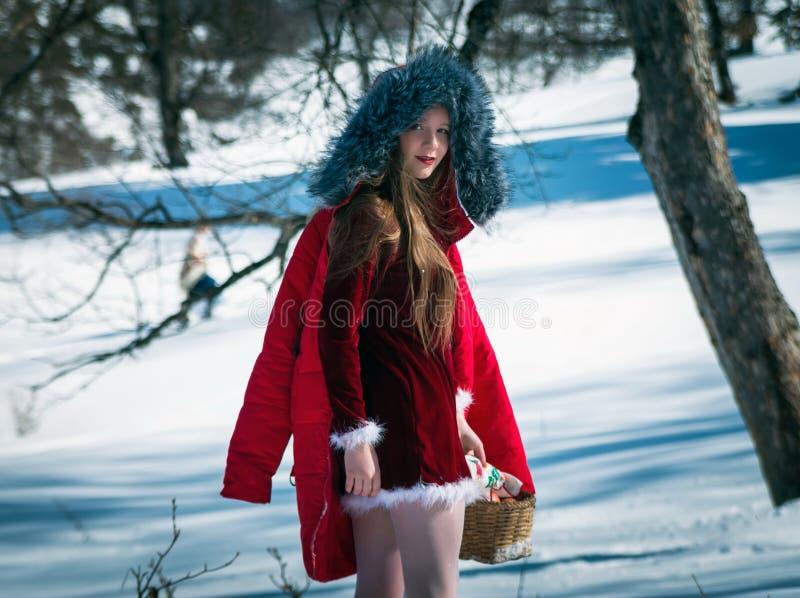 Fille dans la neige images libres de droits