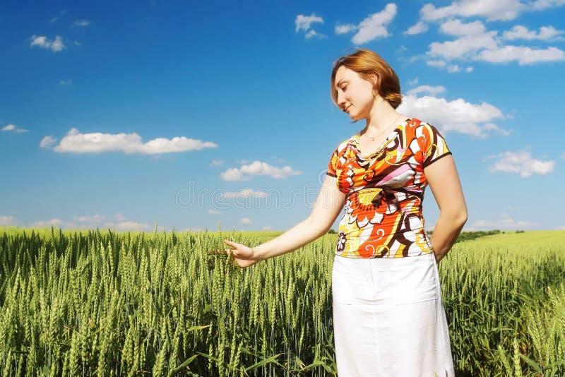 Fille dans le champ de maïs photo libre de droits