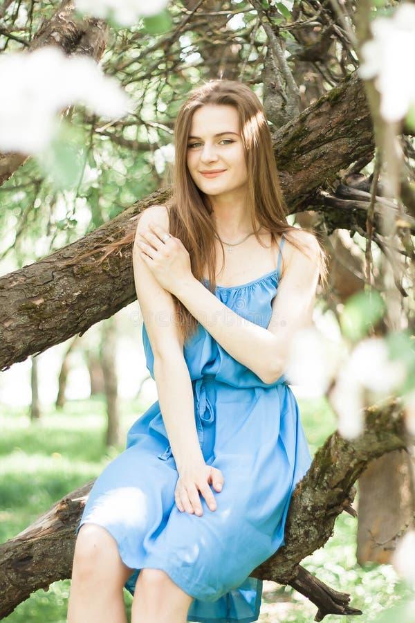 Fille dans le champ de pommiers luxuriant au printemps photo libre de droits