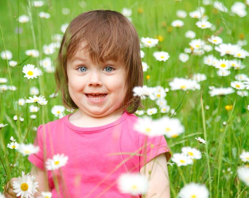 Fille dans le domaine des fleurs photos libres de droits