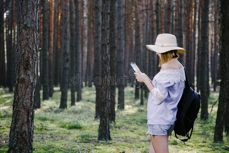 Fille dans les bois image stock