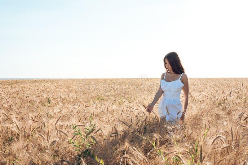 Fille dans un domaine blanc de robe, récréation extérieure de blé, belle robe Marche dans le domaine pendant l'été photos libres de droits