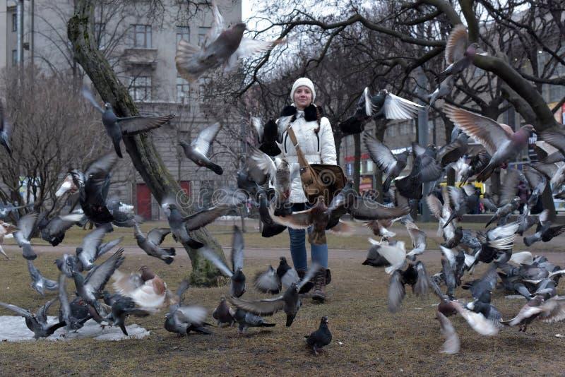 Fille dans un manteau et un chapeau blancs une pluralité de pigeon image stock