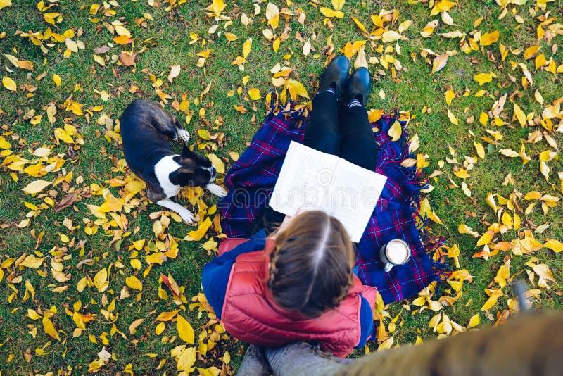 Fille de la personne A de mode de vie la jeune lit un livre sous un esprit d'arbre photos stock