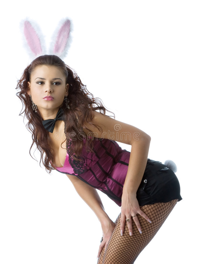 Fille de lapin sexy image stock
