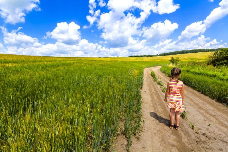 Fille de petit enfant seul marchant sur le chemin de terre d'été dans le domaine de culture verte photos libres de droits